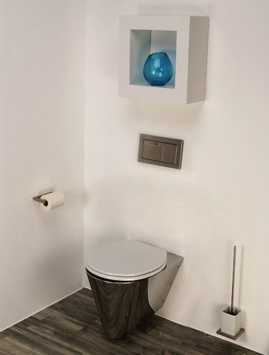 Miniloo Wall Hung Toilet Configured For In Flushing